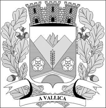 Commune de Vallica